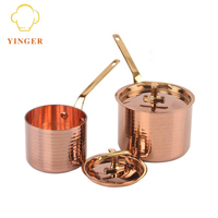 Professional kitchenware stainless steel copper cooking sauce pot