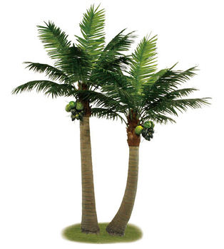 10ft Indoor Palm Trees For Sale - Buy Artificial Palm Tree,Indoor ...