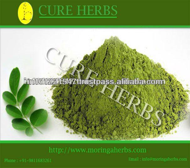 Moringa Oleifera Powder For Uti