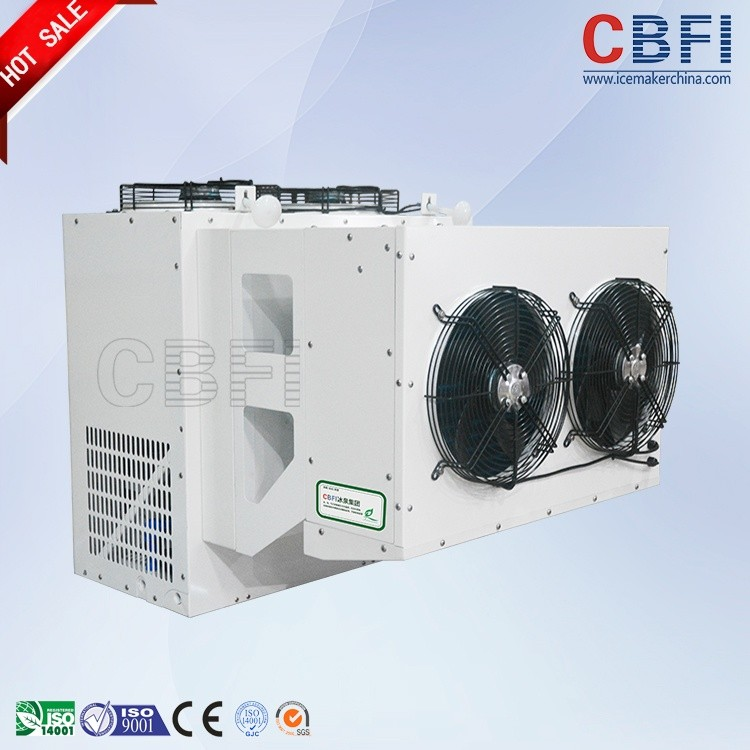 CBFI clean coldrooms for sale type for freezingg-24