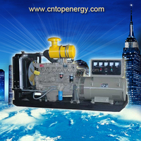 Super!!! POWERGEN Industrial Purpose Open or Sound Proof Prime Rating 200KW Standby Diesel Generator
