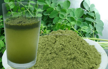 factory price Moringa Leaf Powder