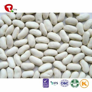 TTN bulk all kinds of kidney beans ethiopian red kidney beans for sale