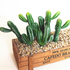 Wholesale Ornamental Cactus/ Cactus And Succulents/ Artificial Cactus Plants