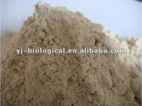 China rice protein wholesalers