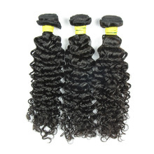 JP hair factory shedding free Malaysia curly hair extension