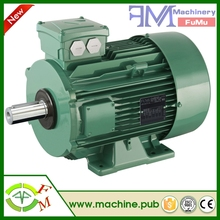 Commercial bed vibration motor