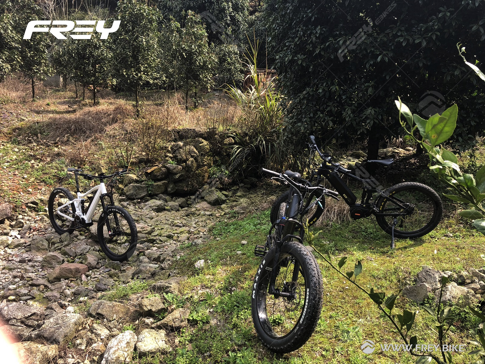 Frey AM1000 Bafang Mid Drive 1000W Elektrische Mountainbike Full Suspension Emtb Berg Ebike Enduro Ebike