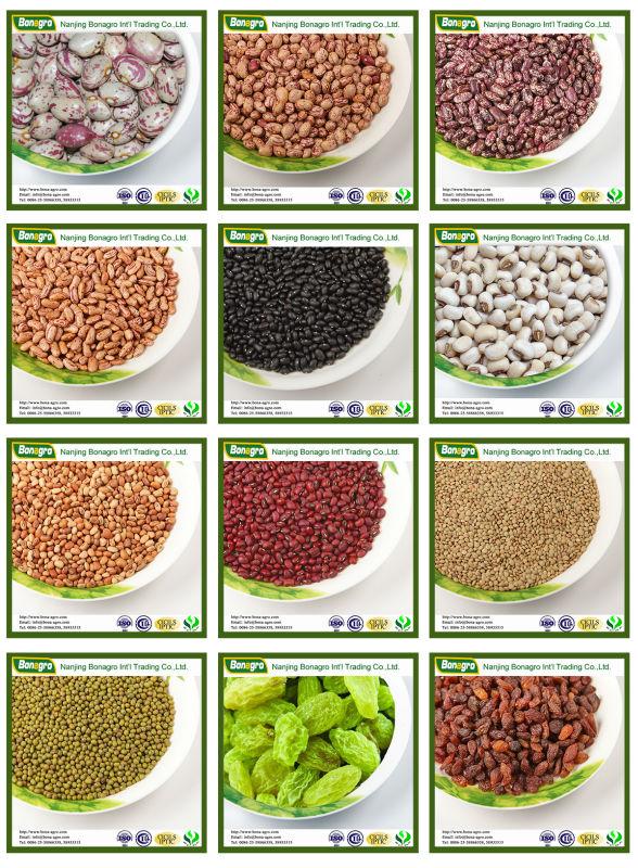 Arabica Coffee Beans/green Coffee Yunnan Origin