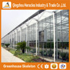 Heracles factory price multi-span industrial glass greenhouse