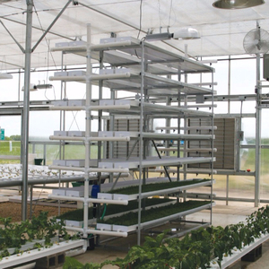 Greenhouse cultivation system /hydroponic greenhouse systems