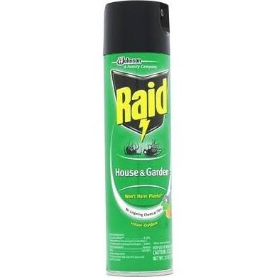 Raid House and Garden Bug Killer, Indoor and Outdoor, 11 Ounce Can