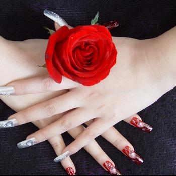 Xl10 Populaire Nail Tips Nail Art Gift Set Decoratieve Kerst Platen