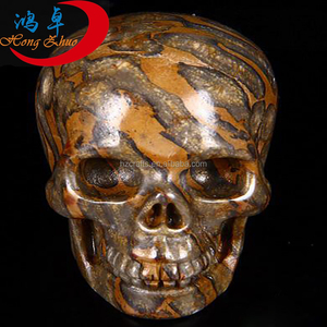 Natural Crinoid Fossil Human skull Carving, crystal reiki healing stones  Collection