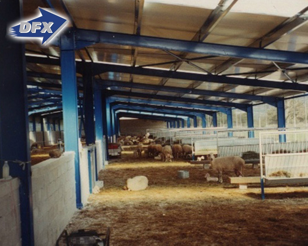 China Supplier Prefabricated Steel Structure Goat Farm Sheep Animal Farming Design Shed House