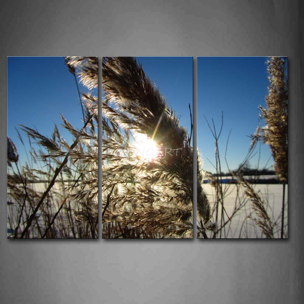 3 Piece Wall Art Painting Sunbeam And Grass In Winter Picture Print On Canvas Botanical 4 The Picture Home Decor Oil Prints
