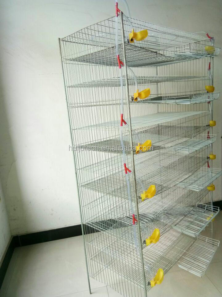 6 layer 300 quails Galvanized wire mesh quail cage conforms with ...