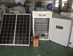 Digital automatic 440 chicken egg incubator with solar power panel and battery