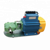 WCB series small gear oil pump portable electric oil pump self priming oil pump cast iron and SS304 material