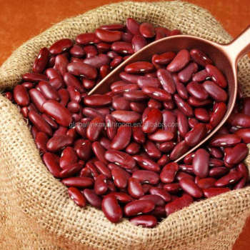 High quality British Dark Red Kidney Bean