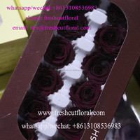 Decorative 50 Red Preserved Roses Offered All The Year For Centerpieces