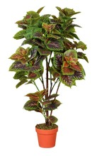 artificial herbs in pots, artificial herbs in pots suppliers and