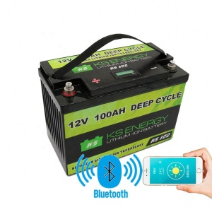 Professional 100Ah Li Ion Pack 12V Ac Delco Battery With APP Bluetooth control