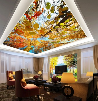 3D European Style Wall Paper Murals Home Decorate Ceiling Murals For Sale Part 58
