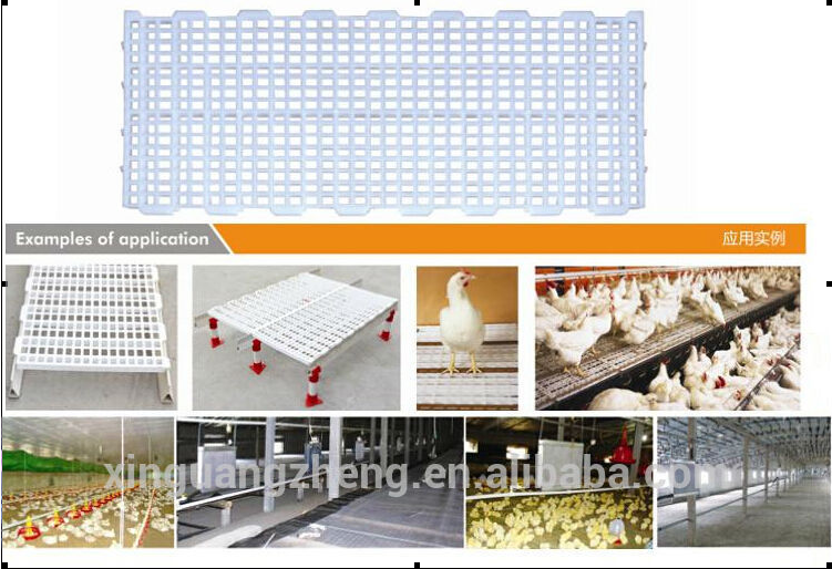 automatic poultry control farm for broiler and chicken house