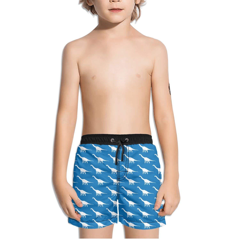 a96d46ab92 Get Quotations · FullBo Brachiosaurus Dinosaur Silhouette Blue and White  Little Boy's Short Swim Trunks Quick Dry Beach Shorts