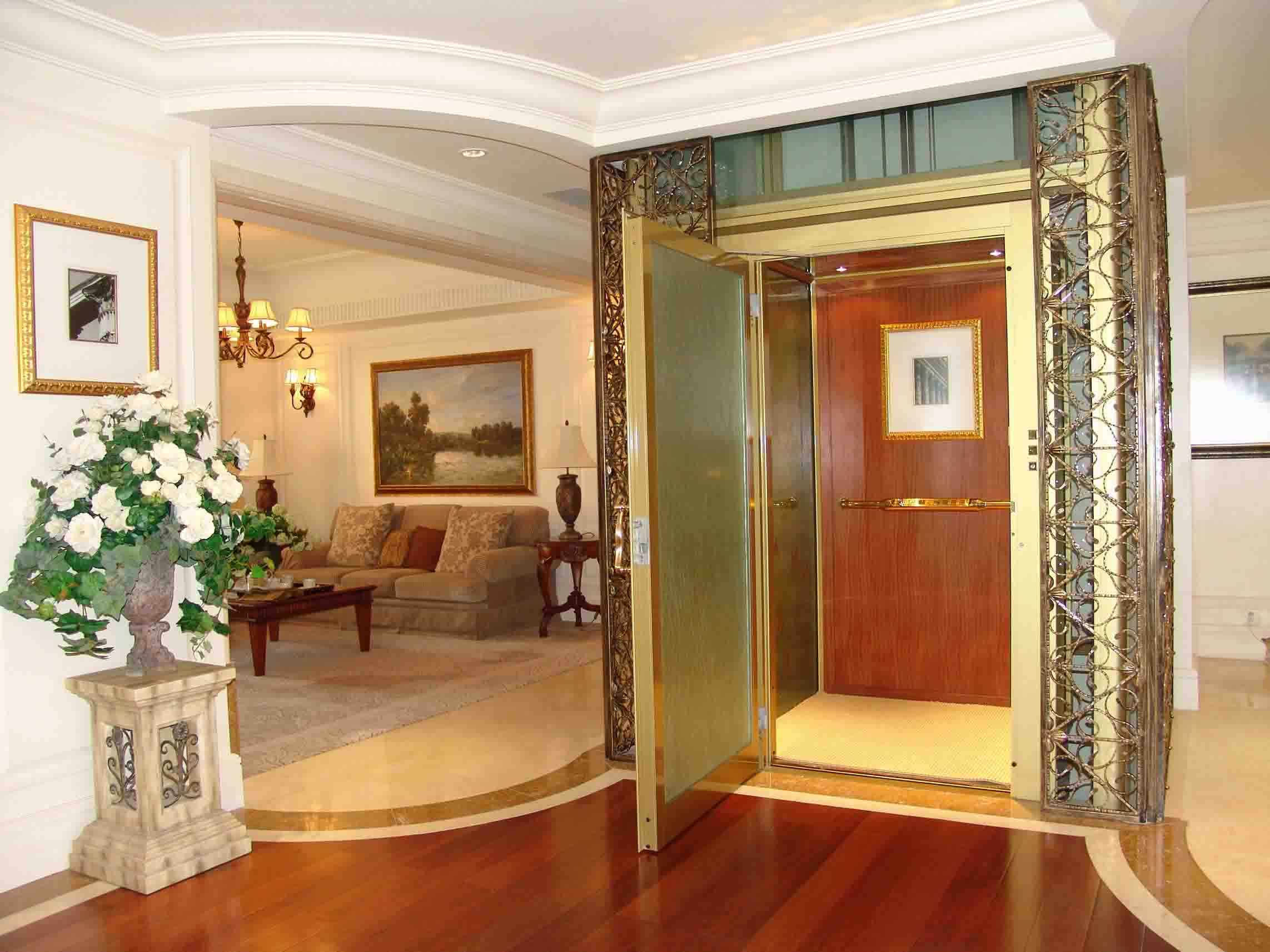 Small villa lift for home use with best price from delfar for Small lifts for houses