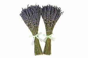 XWXS 2 Bunches French Dried Lavender Flowers Bunch, Fragrant long 28cm-32cm (0.1kg)