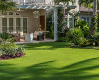 Free Samples ASHER 6-8 Years Warranty Synthetic Turf Artificial Grass Lawn for Other Landscaping