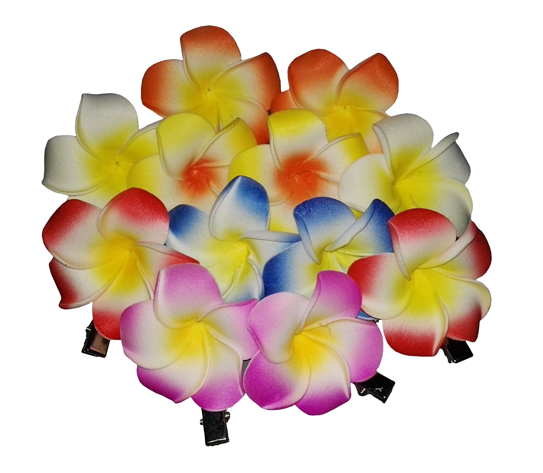 Cheap india hawaiian foam flower hair clips find india hawaiian get quotations 12 pcs assored color 5cm hawaiian plumeria foam flower hair clips bridal barrette hair acceessories hairclip izmirmasajfo
