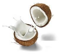 Organic Coconut Milk in China