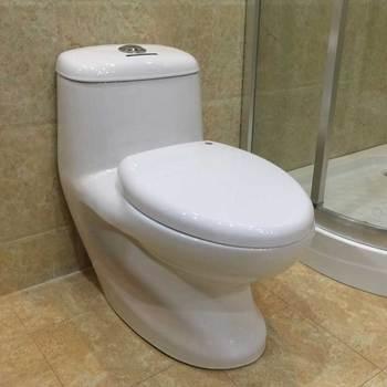 Ovs Ceramic Bathroom Best Design Indian Water Closet