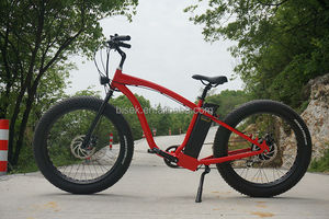 Electric Bike With Lifepo4 Battery Supplieranufacturers At Alibaba