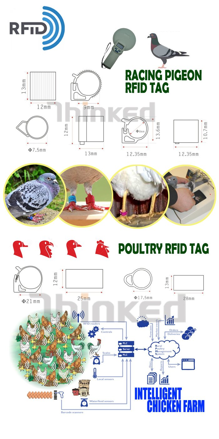 134.2khz rfid chip benzing hitag s256 racing pigeon electronic tracking plastic leg foot smart tag ring band