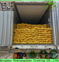 One of the most popular russet potato in China: Shandong potato