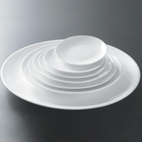 9 inch Round White Porcelain Food Plates Dishes