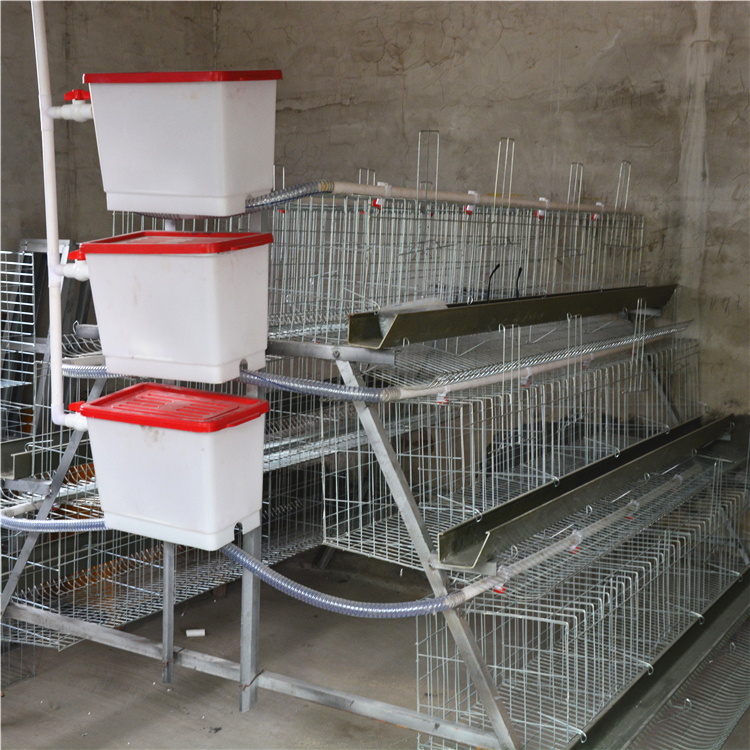 poultry farm laying hens used layer battery chicken cage