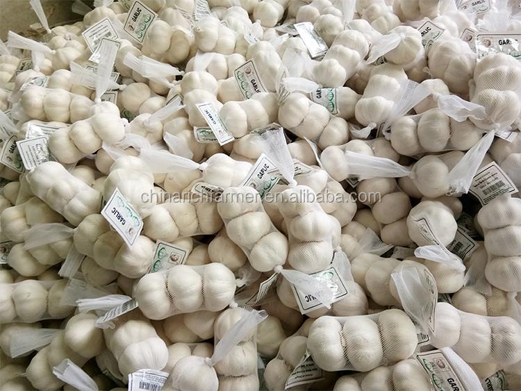 2019 New crop china 마늘 price natural 마늘 price