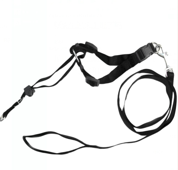 Hot Selling Gentle Leader Head Collar Dog Lead Nylon With Training