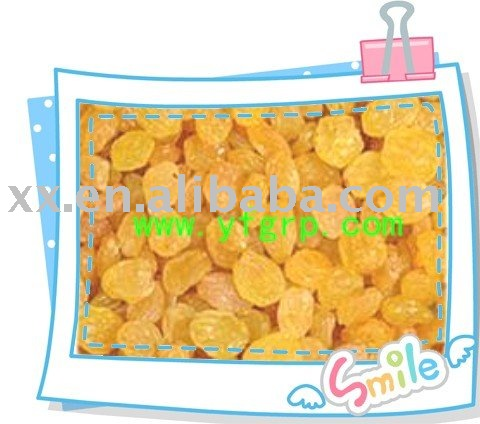 sell raisins,(sultanas) golden raisins --hot offer