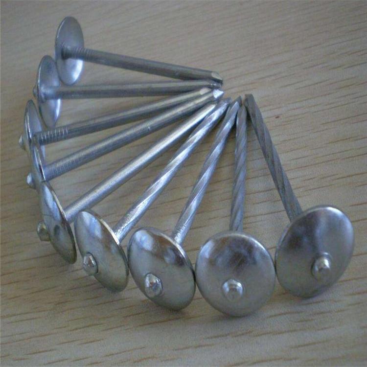 מטריית ראש קירוי ציפורניים/גלי ציפורניים מגולוון שוק מעוות/מטריית ראש
