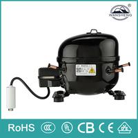 WX60YZL 50Hz R600a LBP Electric Portable small size 12 volt refrigerator compressor