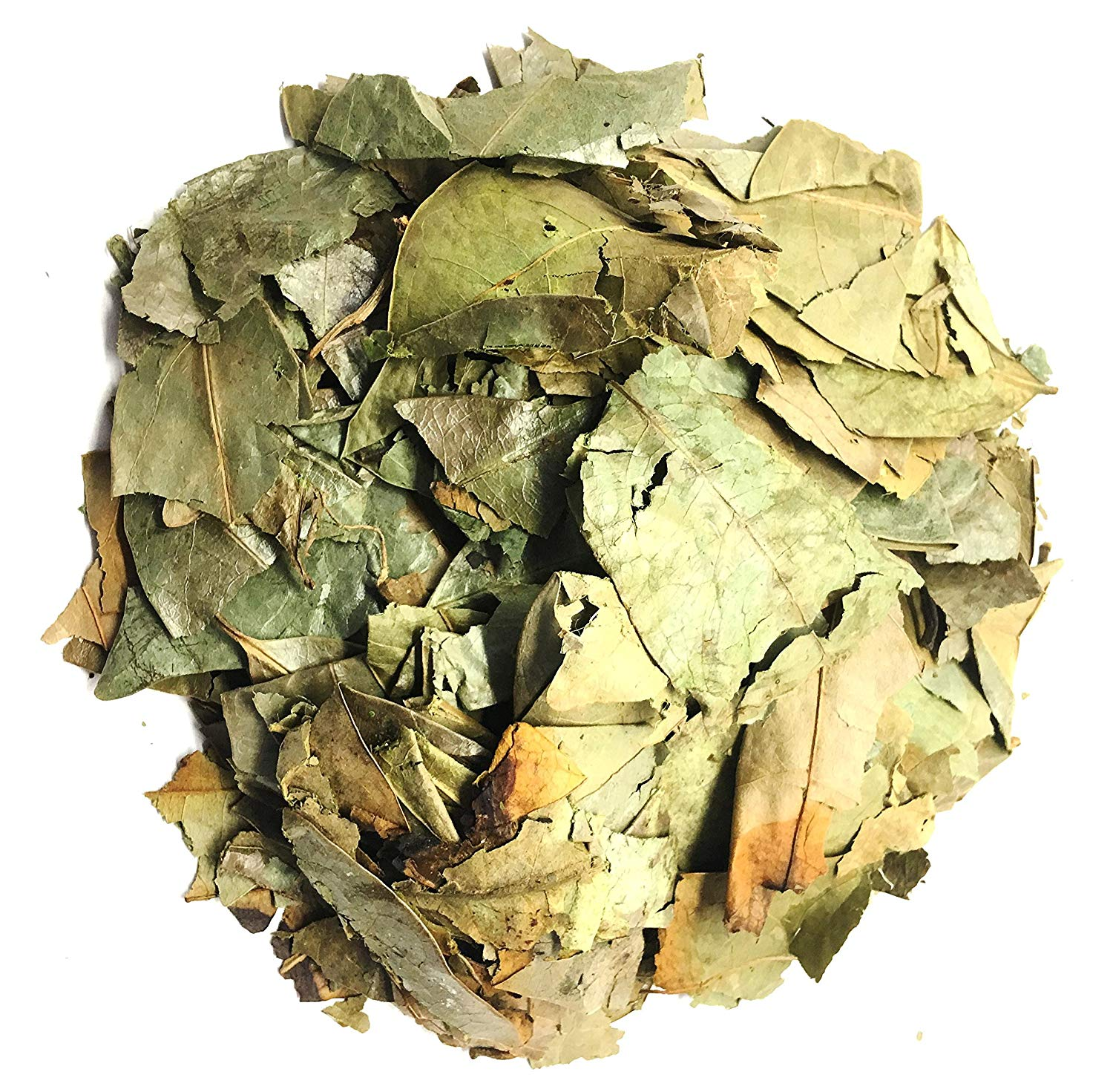 Soursop Leaves - Hojas de Guanabana Herbal Tea Value Pack (105g) Graviola leaves