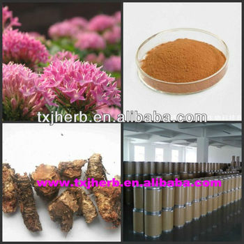 Supply natural herbal extract organic rhodiola rosea root powder