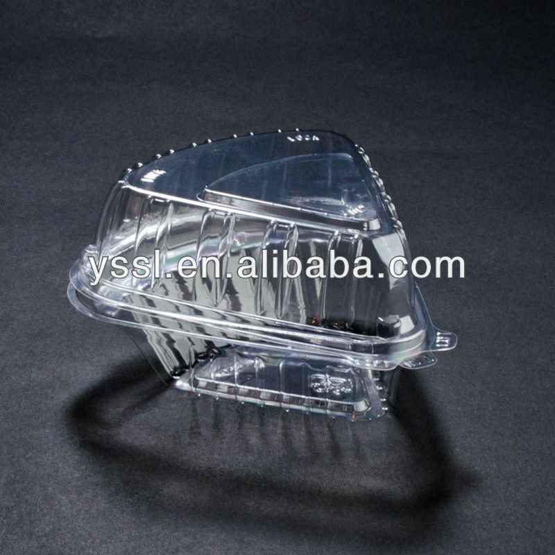 Clear Hinged Lid Plastic Container
