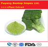 Xi Lan Hua Supply Pure high quality Supply Natural Organic Broccoli Powder